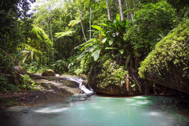 Saint Lucia - Natur pur