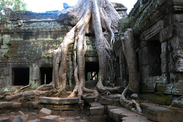 Kambodscha - Ta Prohm